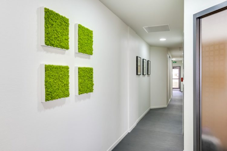 Décoration du couloir des bureaux à  St Grégoire (35) par Florence Vatelot, Décoratrice UFDI à St Malo, Dinan, Dinard et Cancale (22)