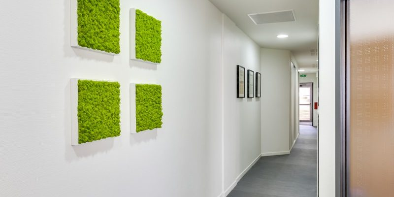 Décoration du couloir des bureaux professionnels