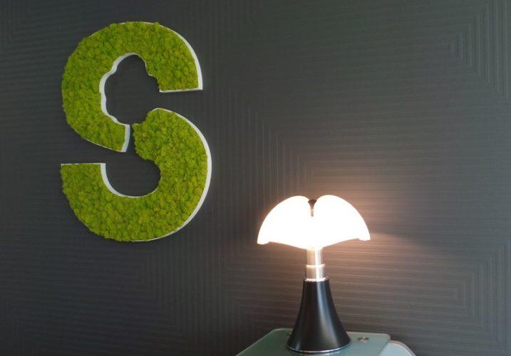 Focus logo végétal, lampe pipistrello  à St Grégoire (35) par Florence Vatelot, Décoratrice UFDI à St Malo, Dinan, Dinard et Cancale (22)